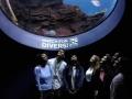 Sharma lab and friends explore the Georgia aquarium at BMES 2018