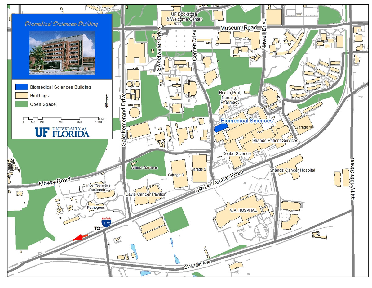 University Of Florida Location Map.Contact Us J Crayton Pruitt Family Department Of Biomedical
